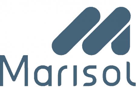 Marisol S/A - Indústria de Vestuário
